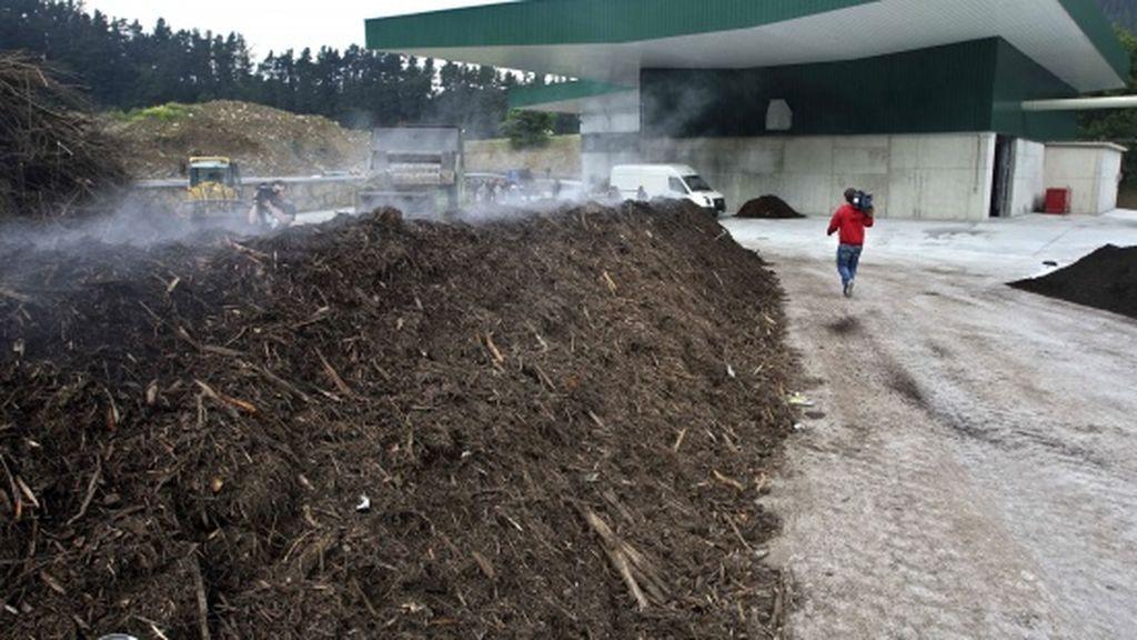 Convertir a los muertos en compost, la iniciativa de un partido ecologista en Bélgica
