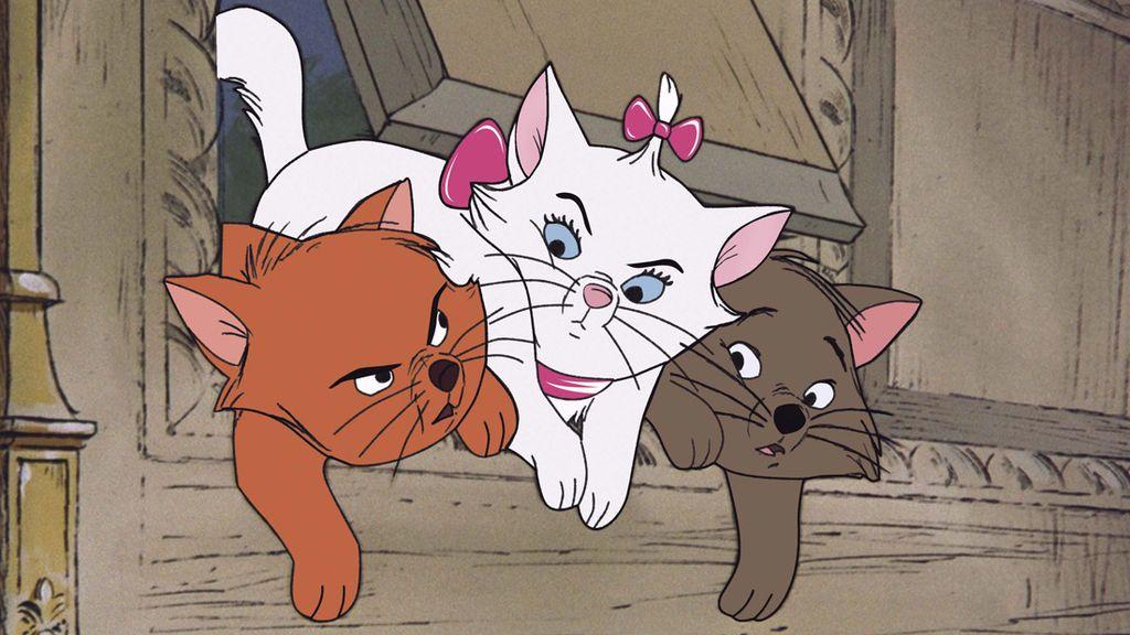 Lo reconozco: quiero más a los gatos que a las personas 😻
