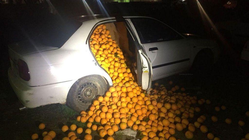 """Detienen a cinco personas que llevaban 4.000 kilos de naranjas en un coche...""""para consumo propio"""""""