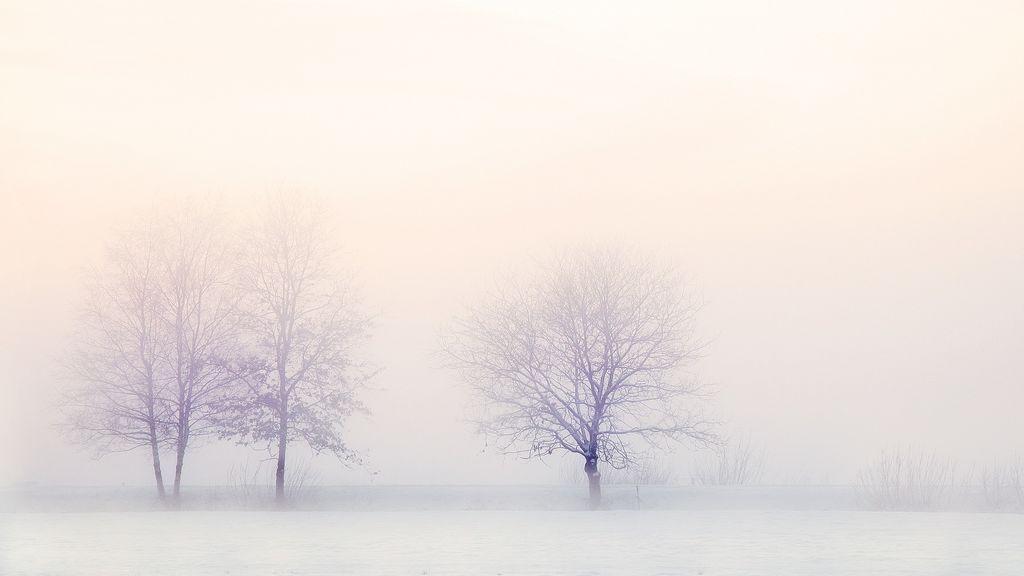 ¿Será el viernes el día más frío del invierno? Te contamos por qué y a qué temperaturas bajaremos