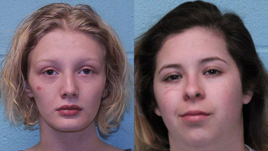 Detenidas dos jóvenes por irrumpir en la casa de una compañera, matar a sus mascotas e incendiar su coche