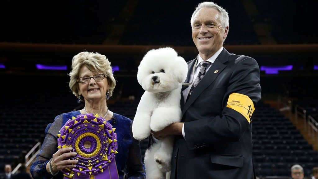 Flynn, un bichon frise y ganador de Best In Show, el entrenador Bill McFadden y la jueza Betty-Anne Stenmark posan juntos después de haber ganado la 142 ° Westminster Kennel Club Dog Show en Nueva York, EE. UU
