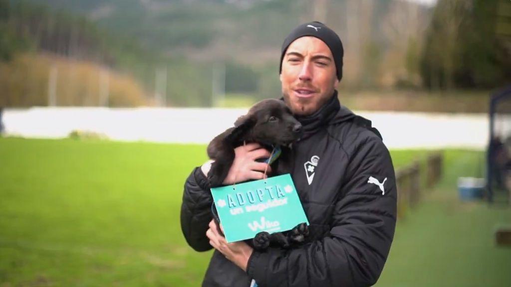El Eibar llamará a su afición a adoptar perros en su encuentro contra el FC Barcelona