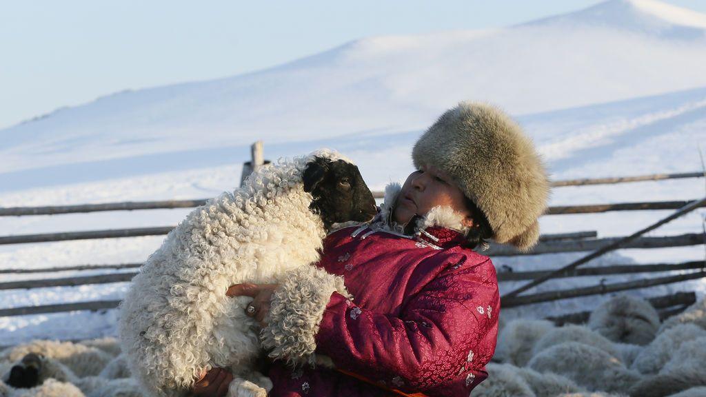 Una granjera sostiene un cordero en Siberia