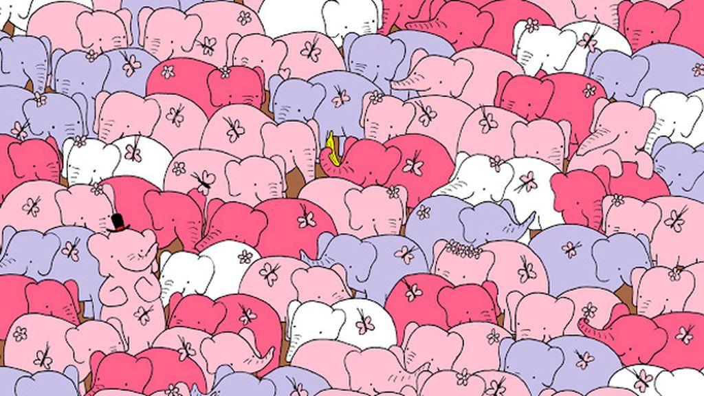 ¿Puedes encontrar el corazón entre los elefantes?