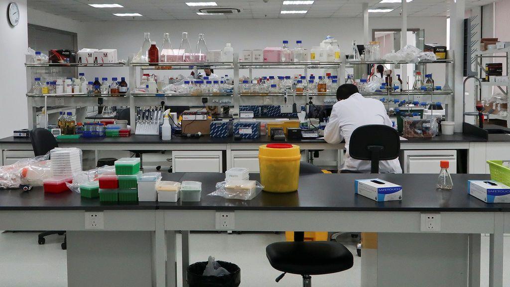 Investigadores españoles descubren nuevas regiones del genoma que aumentan el riesgo de padecer esquizofrenia