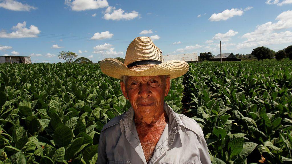 Vicente Fernández, un trabajador de 82 años, posa en su granja de tabaco en Pinar del Río, Cuba