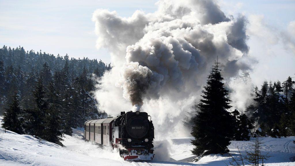 Un tren a vapor se hace paso entre la nieve en Harzer Schmalspurbahn (Alemania)