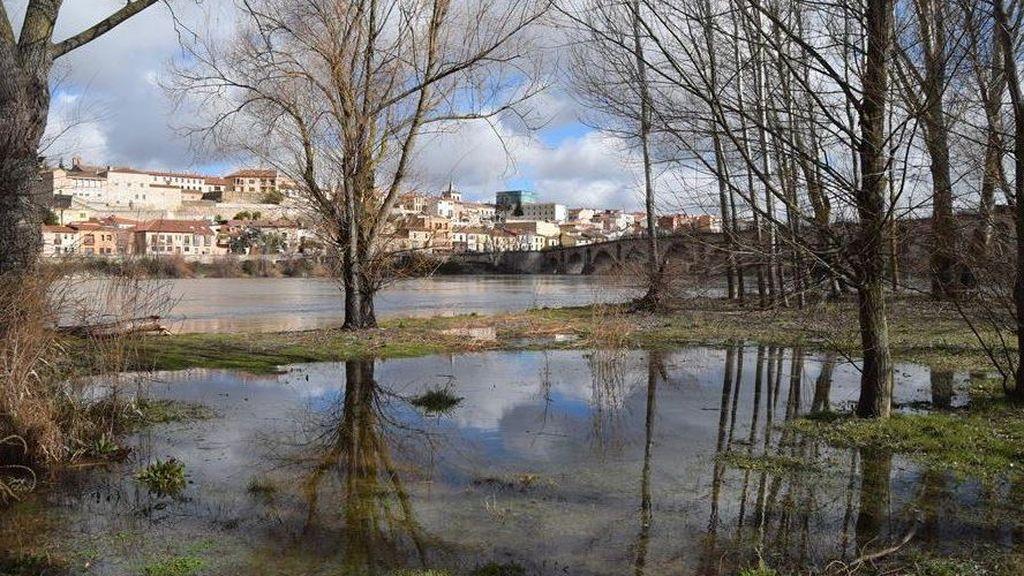El Duero se desborda a su paso por Zamora gracias a las lluvias y el deshielo