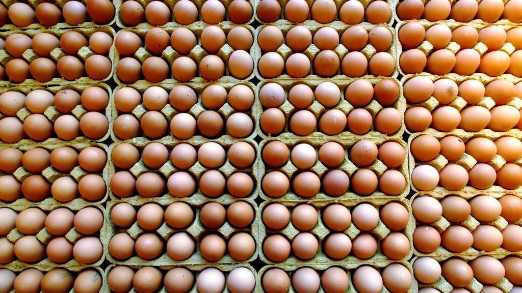 El extraño hallazgo en un huevo que ha dejado descolocados a los científicos