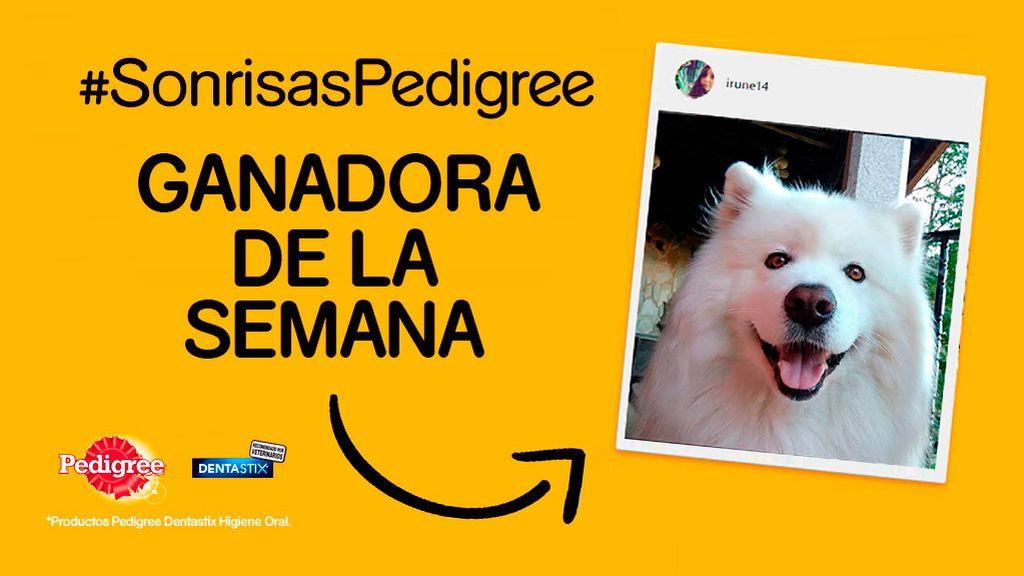¡Ya tenemos a la tercera ganadora del concurso #SonrisasPedigree!
