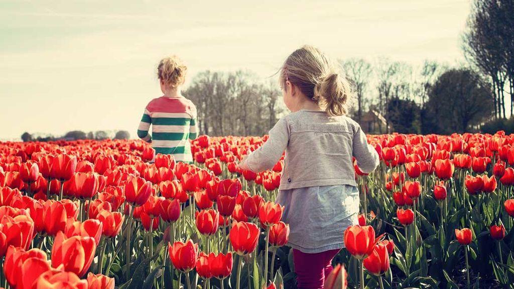 La primavera, a la vuelta de la esquina: 10 enfermedades en las que lo meteo influirá mucho
