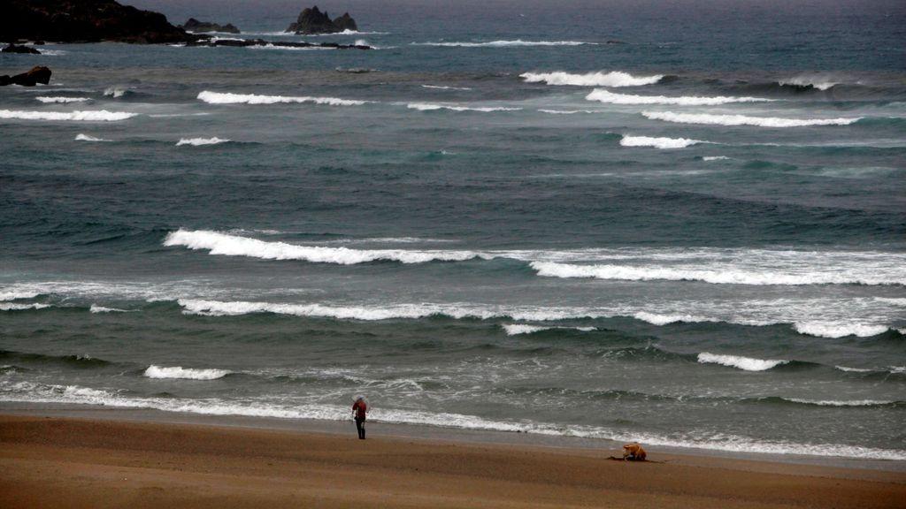 Once provincias tendrán mañana riesgo por nevadas o por fuerte oleaje