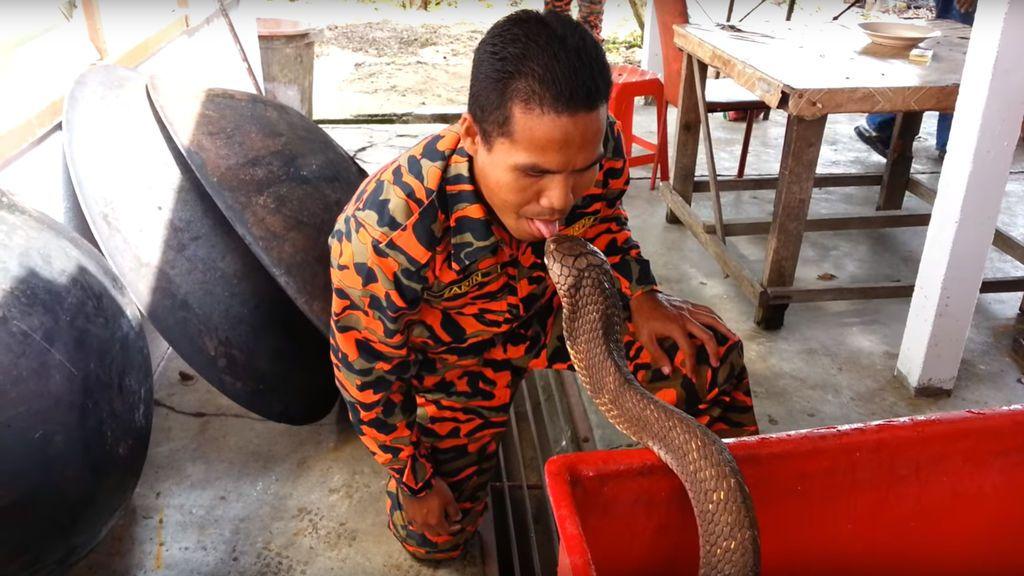 El conocido como 'encantador de serpientes tailandés' muere por la mordedura de una cobra