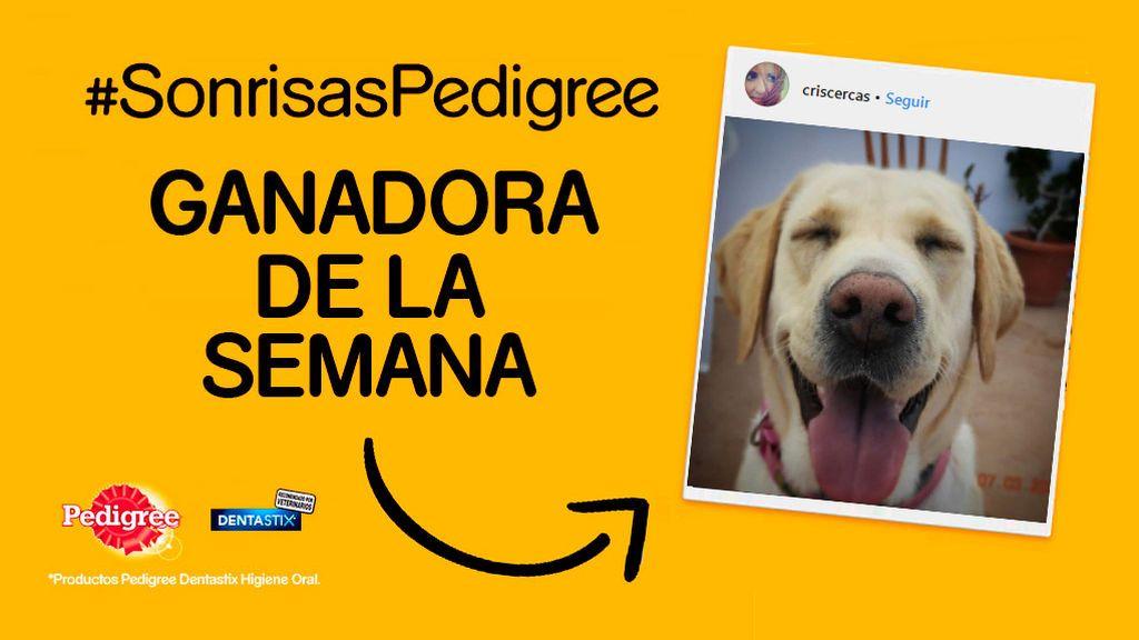 ¡Ya tenemos a la cuarta ganadora del concurso #SonrisasPedigree!
