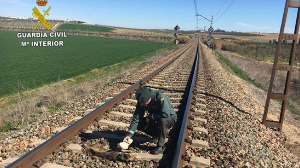 Investigan a un hombre de Olivares por la muerte de una decena de perros atados a la vía del tren