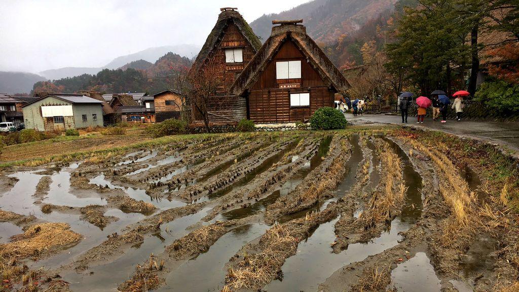 Gifu y sus ciudades detenidas en el tiempo: Shirakawago y Takayama