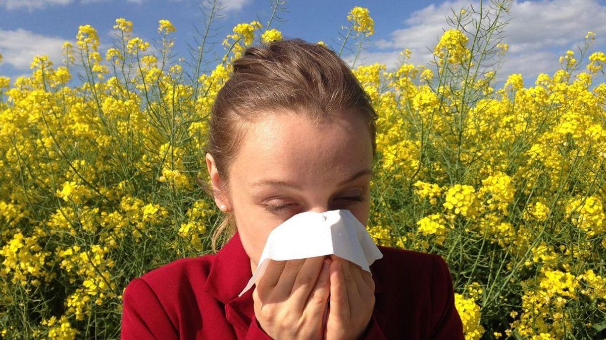 Llega la primavera y las alergias: el 33% de la población las sufren y la mitad son por el polen