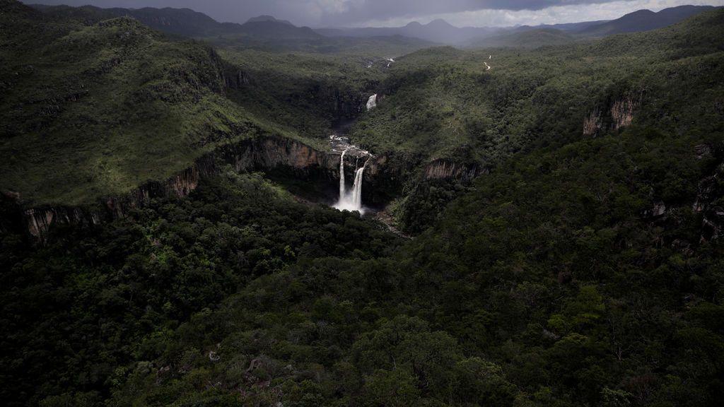Impresionante imagen de la naturaleza más salvaje de Brasil