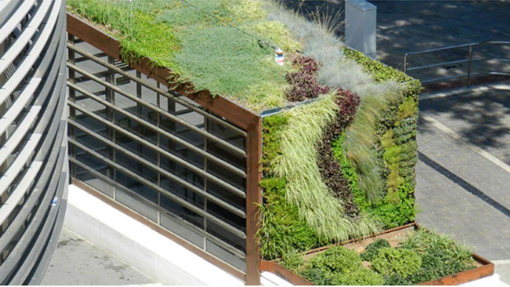 jardines verticales  terapias-Urbanas