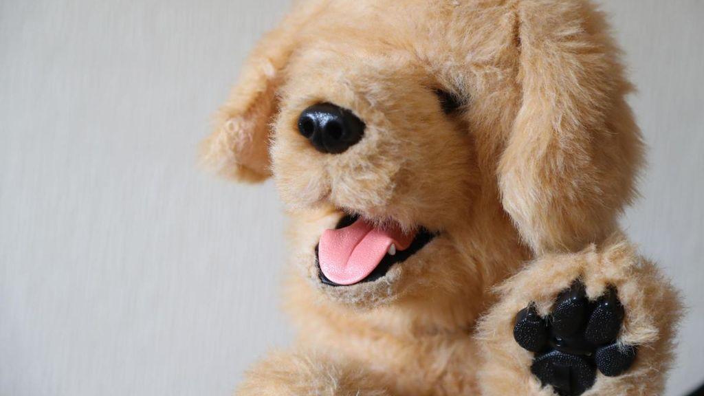 Somos fans de Biscuit: el perro robot que ayuda a ancianos con demencia