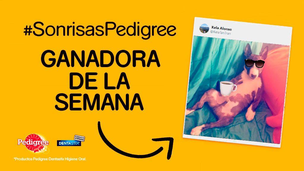 ¡Ya tenemos a la quinta ganadora del concurso #SonrisasPedigree!