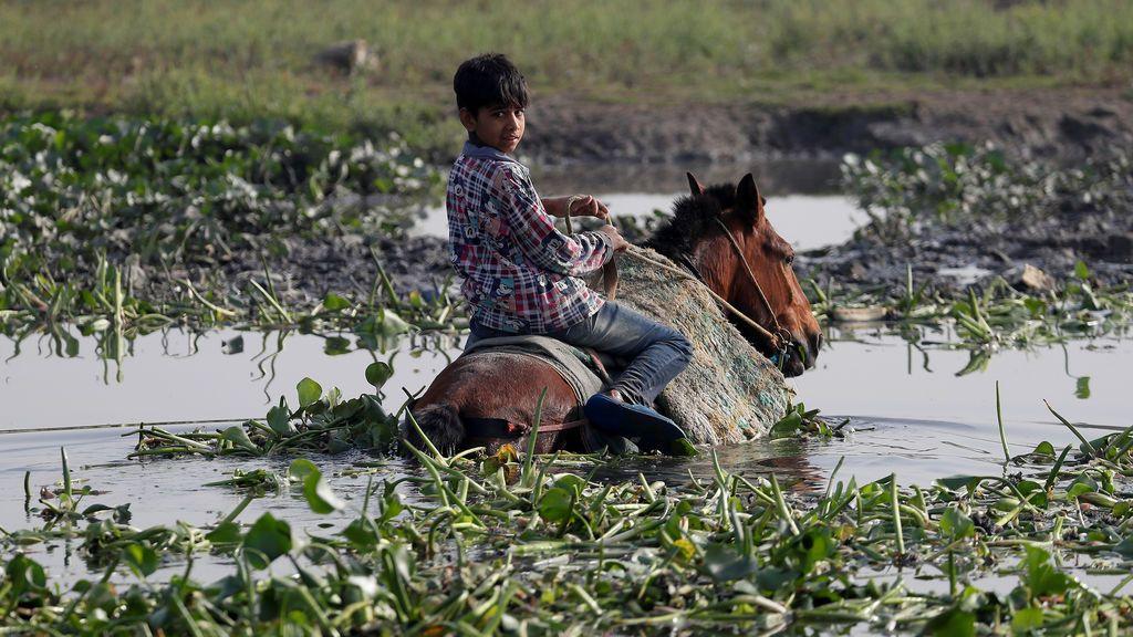 Un niño monta a su caballo