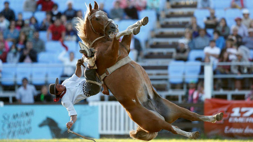 Doma de caballo en un certamen uruguayo