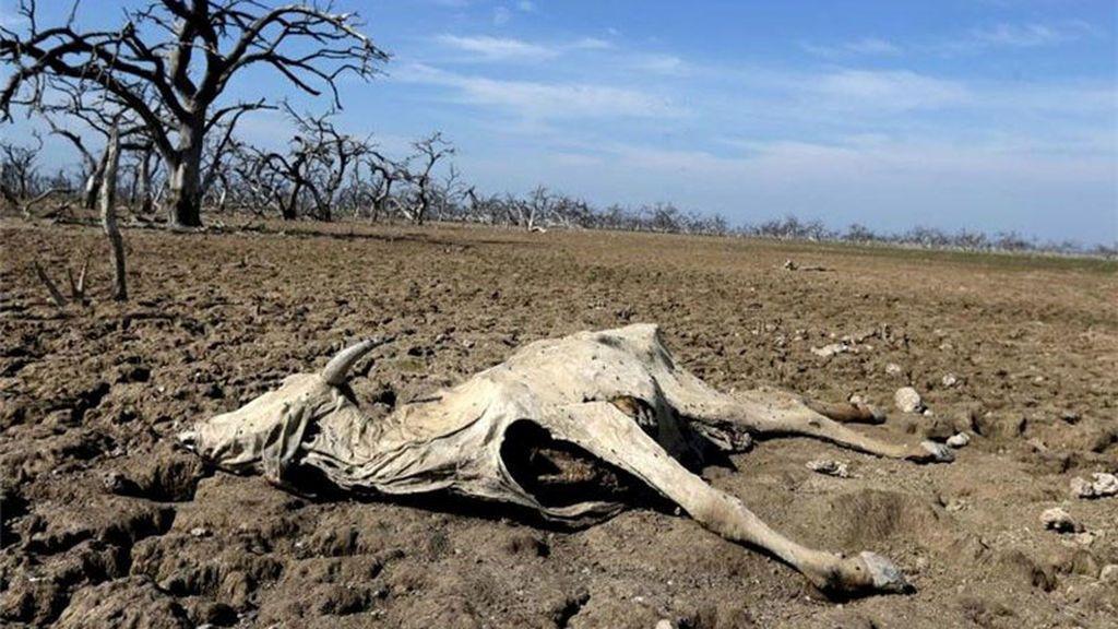 Huellas de la sequía en Irán