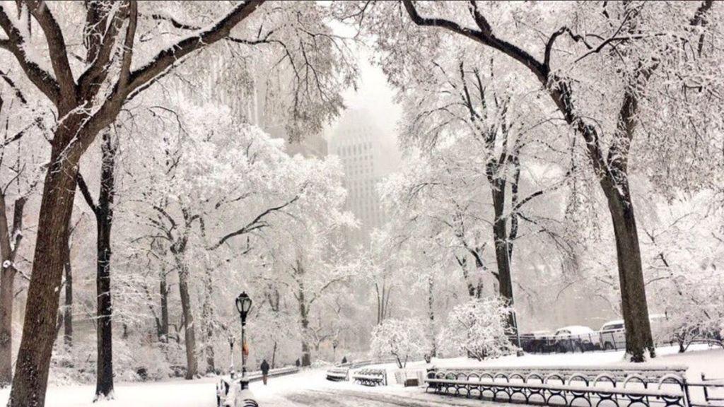 Central Park amanece cubierta de blanco en pleno mes de mayo: es la mayor nevada en 30 años