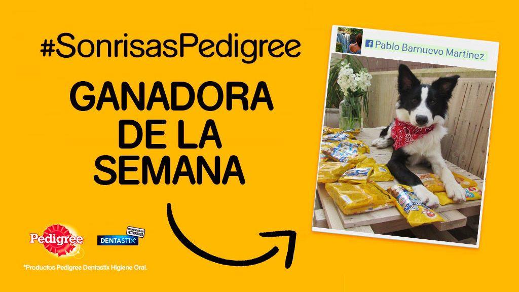 ¡Ya tenemos al sexto ganador del concurso #SonrisasPedigree!