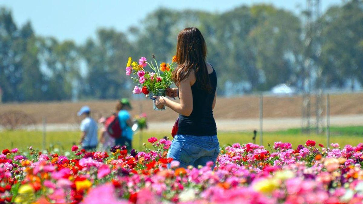 Tregua de primavera: las temperaturas se disparan este jueves y sale el sol en todo el país