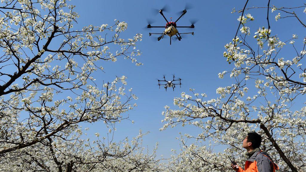 Un hombre observa el vuelo de los drones
