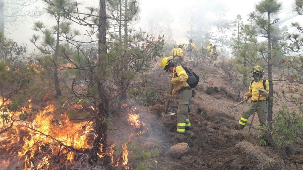 Estabilizado el incendio del municipio tinerfeño de Granadilla