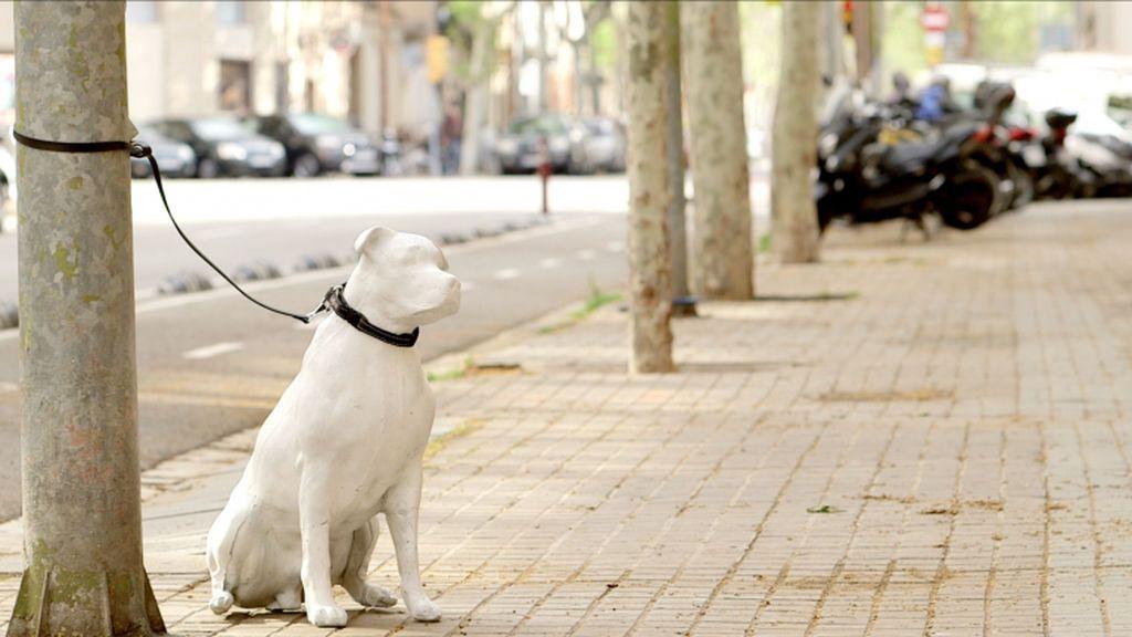 Estatuas de perros abandonados en la calle para fomentar la adopción de mascotas en Barcelona