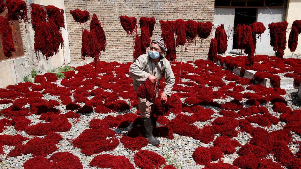 Secado de lana
