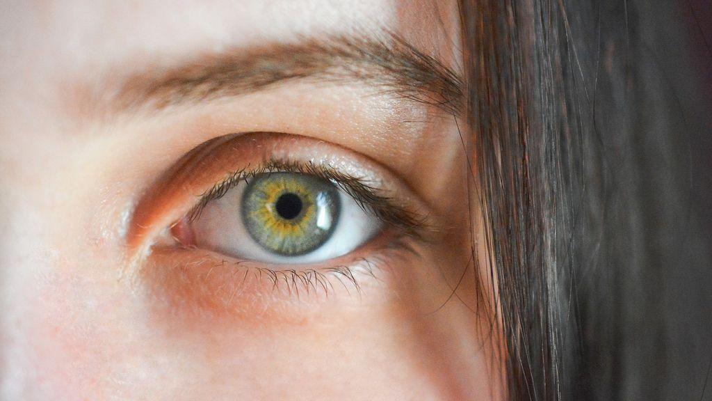 Las cejas, claves en la supervivencia humana