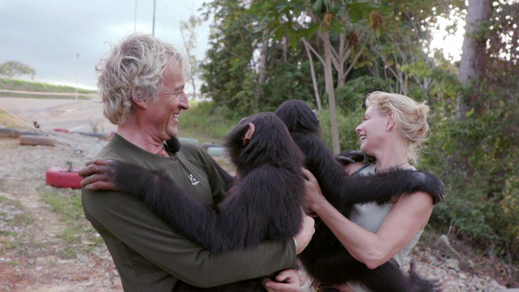 ¡Enternecedor!: Belén Rueda y Calleja visitan a unos chimpancés y ellos corren a abrazarles