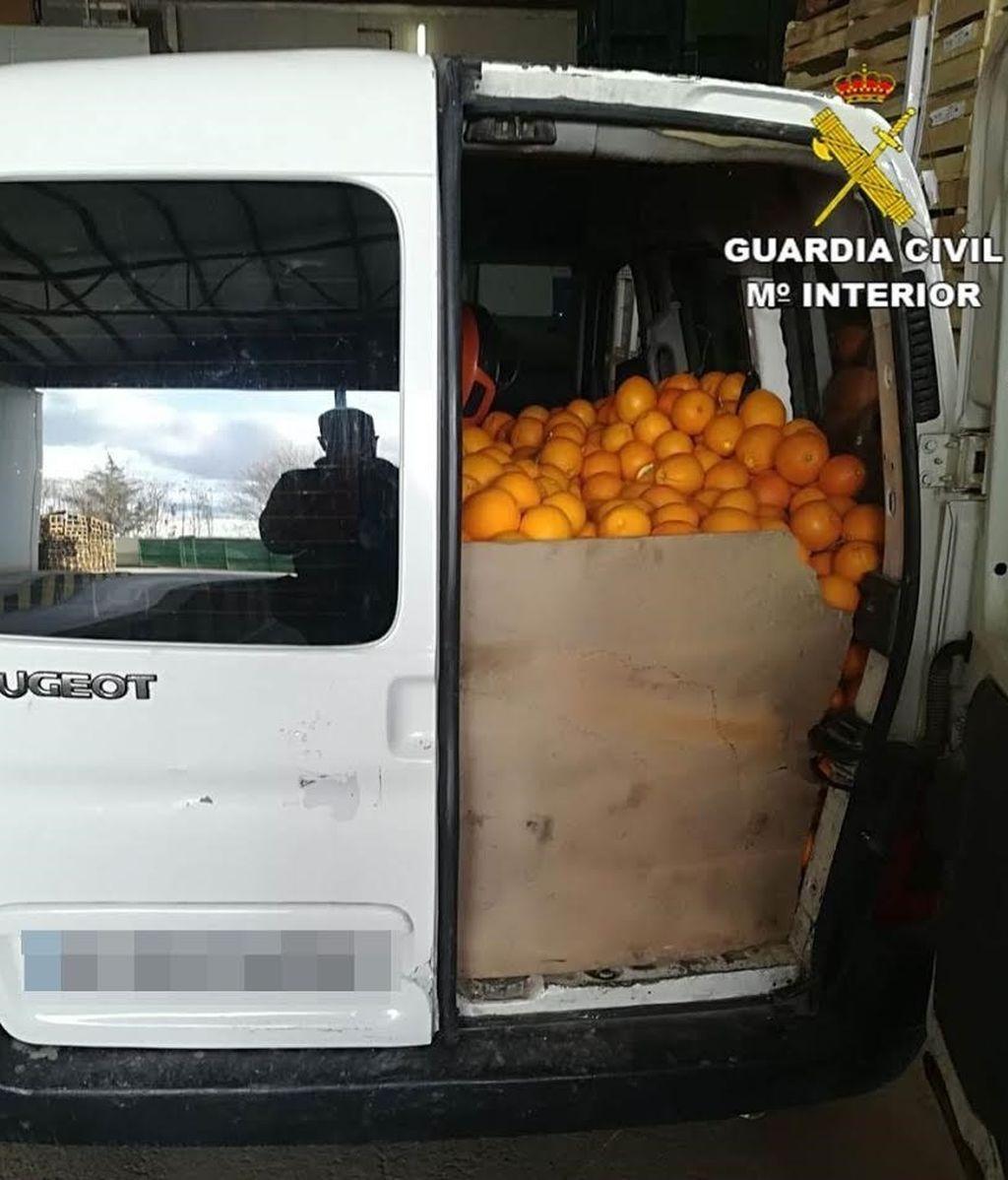 Investigados tres hombres por robar 14 toneladas de naranjas en Valencia