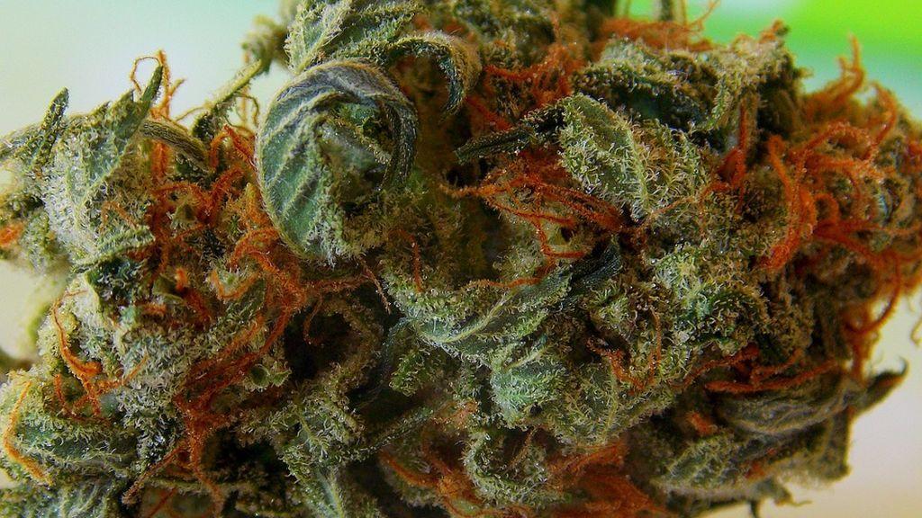 Un estudio revela que fumar marihuana en la adolescencia provoca psicosis