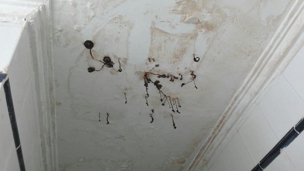 Vecinos de un barrio de Alicante denuncian que les salen setas de los techos de sus viviendas