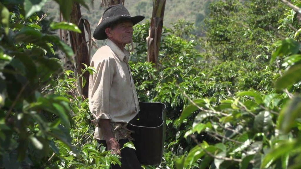 Comprobamos cómo se elabora el mejor café de Medellín