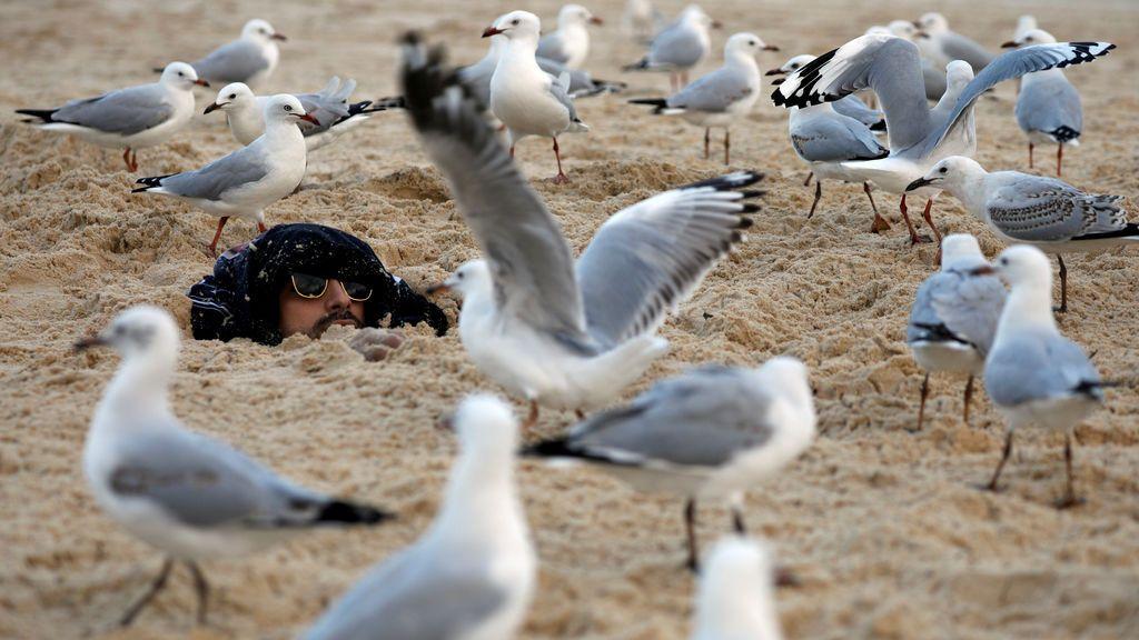 Hombre enterrado en la arena por sus amigos