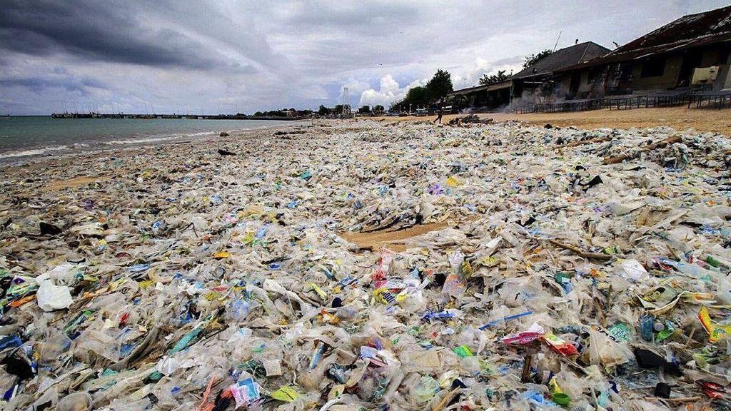 Unos 8.300 millones de toneladas de plástico circulan por el mundo
