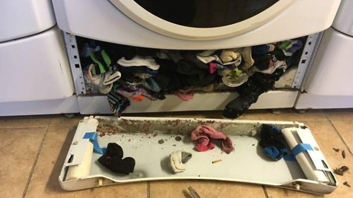 No estas loco, la lavadora SÍ se come tus calcetines