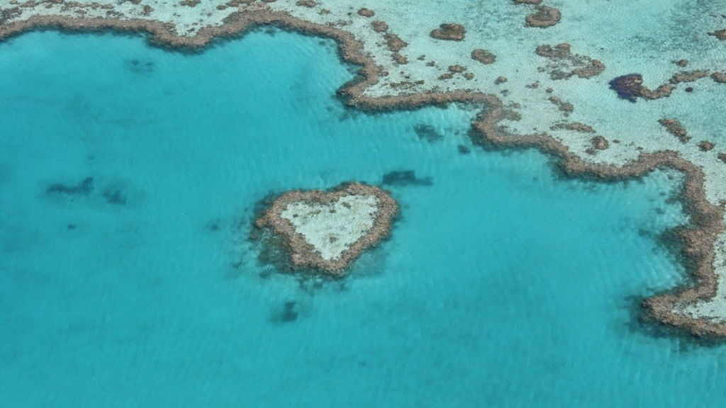 Australia destinará 305 millones de euros para proteger la Gran Barrera de Coral