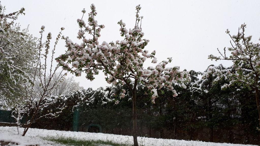 La nieve dificulta la circulación en la N-VI en el Puerto del León (Segovia)