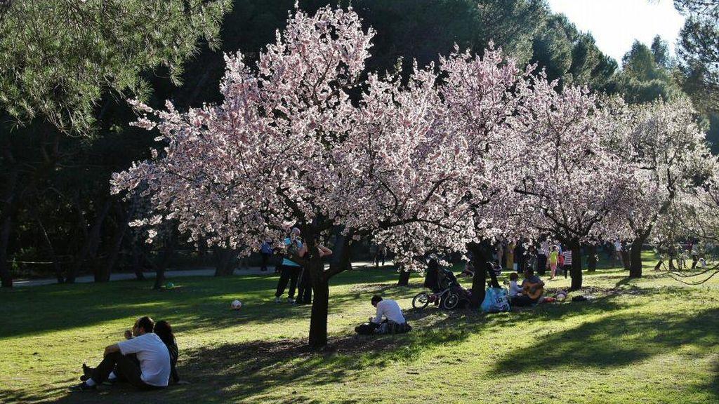 fotos-madrid-parque-quinta-molinos-016
