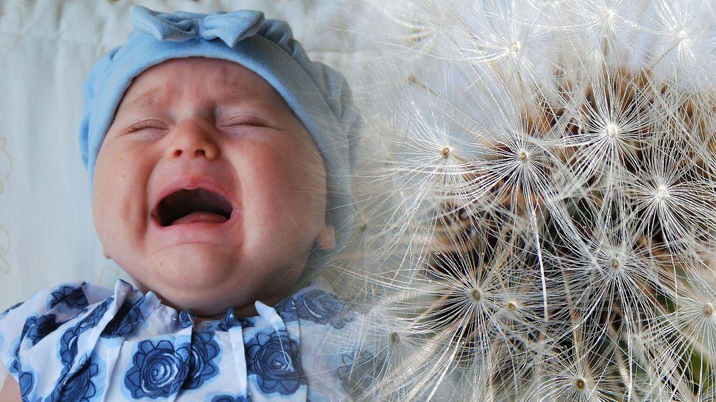 En primavera: cómo detectar y tratar las alergias en los más pequeños