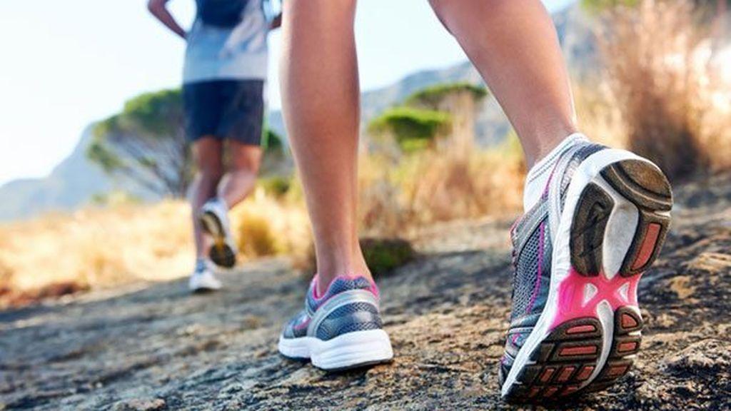Identifican una molécula de grasa que circula por la sangre tras realizar ejercicio físico